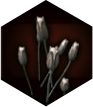 blood_lotus_icon.png